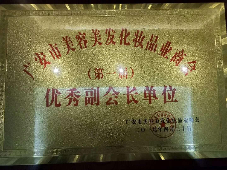广安市美容美发化妆品业商会第一届总结会暨换届选举大会